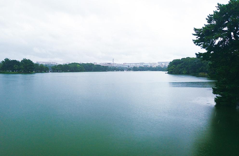 hotori_0096.jpg