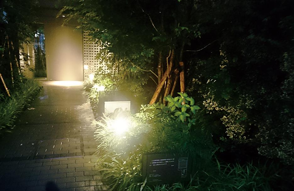 home_0305.jpg